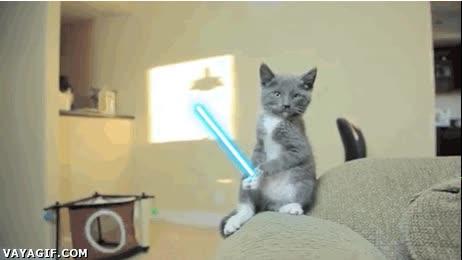 Enlace a Ya se conocen a dos de los protagonistas de las nuevas pelis de Star Wars