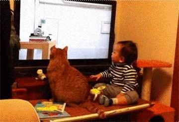 Enlace a Creo que este niño y su gato pasan mucho tiempo juntos