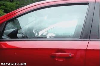 Enlace a Cómo proteger tu coche si la alarma no funciona