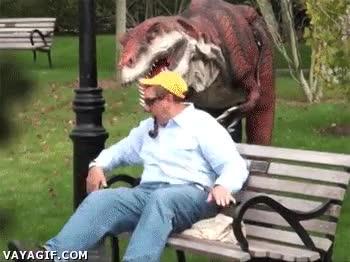 Enlace a Uno ya no puede sentarse tranquilo en un banco del parque sin que aparezca...