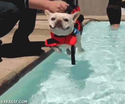 Enlace a Suéltame cuando quieras, ya he activado el modo nadador