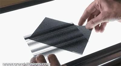 Enlace a Ilusión óptica entre las líneas