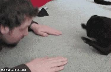 Enlace a ¡No, no y no! ¡No te dejaré acabar con tus manos encima de las mías!
