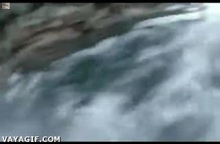 Enlace a No has elegido el mejor momento para tirarte al agua