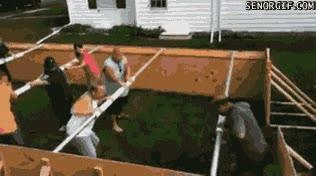 Enlace a Todos los jardines deberían tener uno de estos