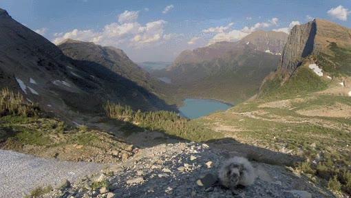 Enlace a Marmota queriendo participar en timelapse