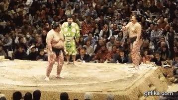 Enlace a Luchadores de sumo con mucho flow