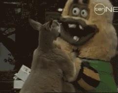 Enlace a Sabía que los canguros eran unos animales muy chungos, pero no me imaginaba hasta qué punto