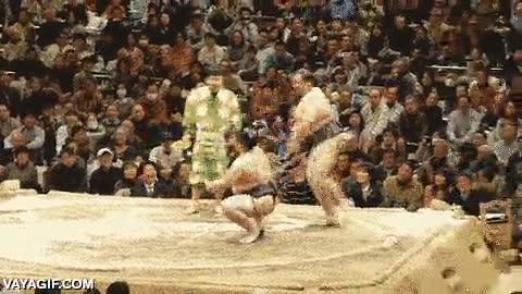 Enlace a Los luchadores de sumo también tienen su sentido del humor