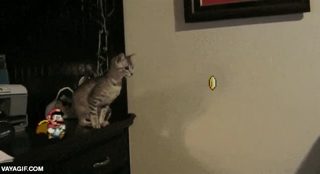 Enlace a Mario puede llegar a ser muy troll con los gatos