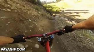 Enlace a Lo típico que te puedes encontrar haciendo descenso en mountain bike