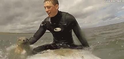 Enlace a ¡Yo también quiero hacer surf! ¡Pues venga, sube que te llevo!