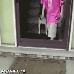 Enlace a ¡Pero ábreme la puerta que sino no puedo salir!