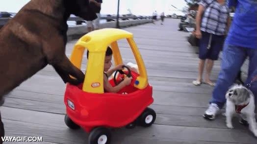 Enlace a ¿Tu coche tiene 115 caballos? El mío con un perro ya tira...