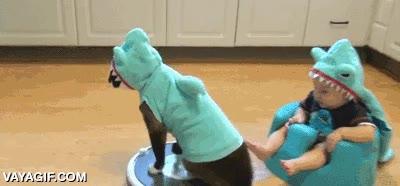 Enlace a Ven conmigo pequeño humanoburón, yo te enseñaré los poderes de los gatoburones