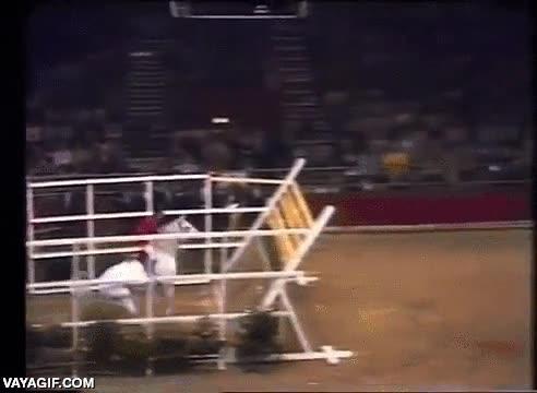 Enlace a Así que dices que tu caballo salta muy alto...
