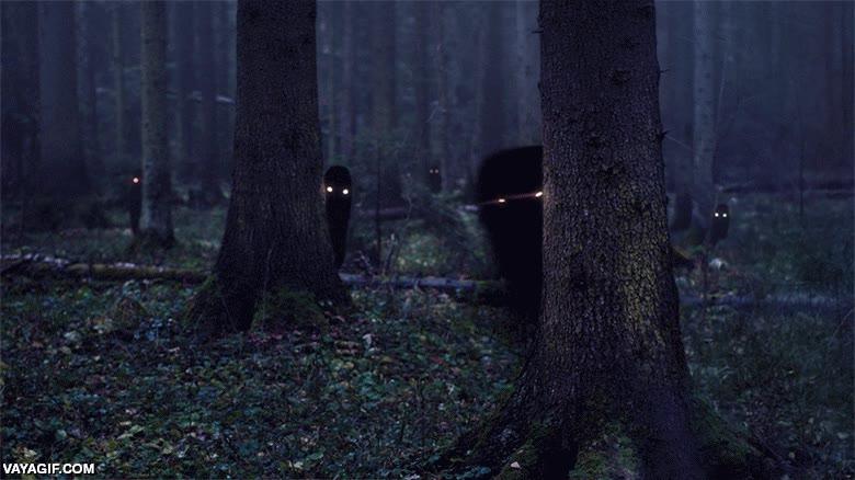 Enlace a Fantasmas en el bosque
