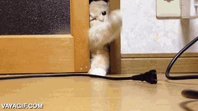 Enlace a Jo, no quepo... A ver si chupando un poco la puerta... No, tampoco...