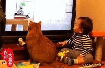 Enlace a Los gatos se parecen a sus dueños