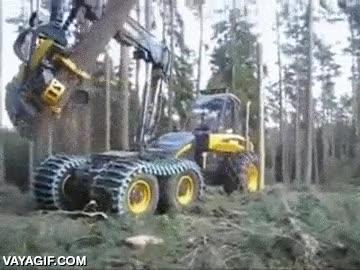 Enlace a Si usáramos el mismo nivel de ingenio en ayudar a la naturaleza en lugar de destruirla...