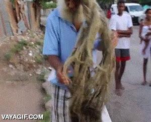 Enlace a ¿Y tú crees que tienes el pelo largo?