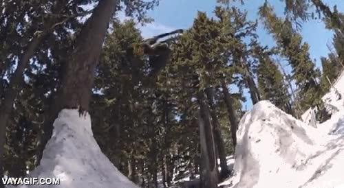 Enlace a Hay que tener mucho control para hacer este truco con los esquís