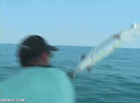 Enlace a No sé si este pescador está muy fuerte o si el pescado ya se lanza a la desesperada