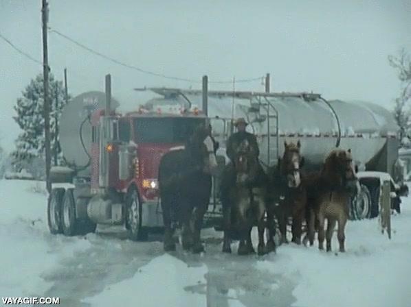 Enlace a Un amish con su carro tirado por cuatro caballos rescata de la nieve a un pedazo de camión cisterna