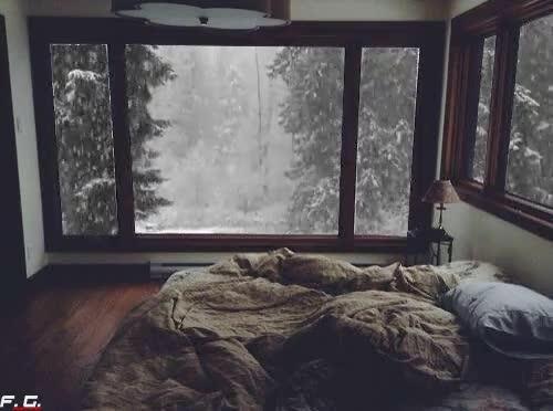Enlace a ¿Hay algo mejor que una cama cómoda en un día de nieve?