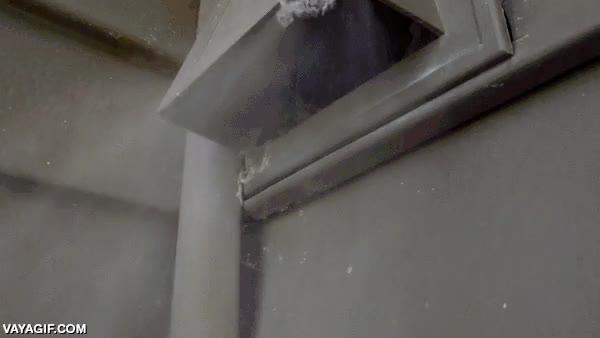 Enlace a Esto es lo que sale del tubo de ventilación de una secadora al enchufarle un soplador de hojas