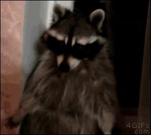 Enlace a Oh, eeeeh... ¿hola?