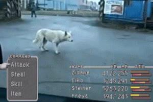 Enlace a Un lobo salvaje ha aparecido, ¿qué harás?