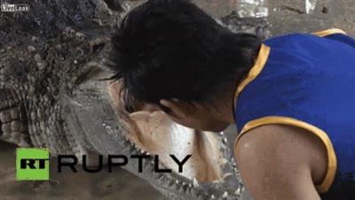 Enlace a Este domador de cocodrilos taiwanés no se conforma con meter la mano en la boca del animal