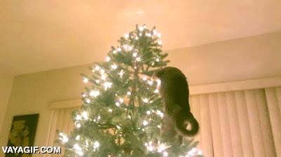 Enlace a Puedes odiar la Navidad, pero nunca tanto como este gato
