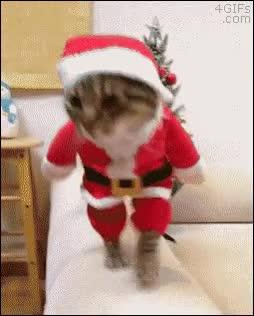 Enlace a ¿Llego muy tarde para Navidad?