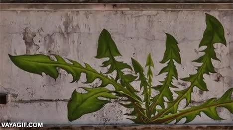 Enlace a Pocas cosas hay más bonitas que un graffiti hecho en time-lapse