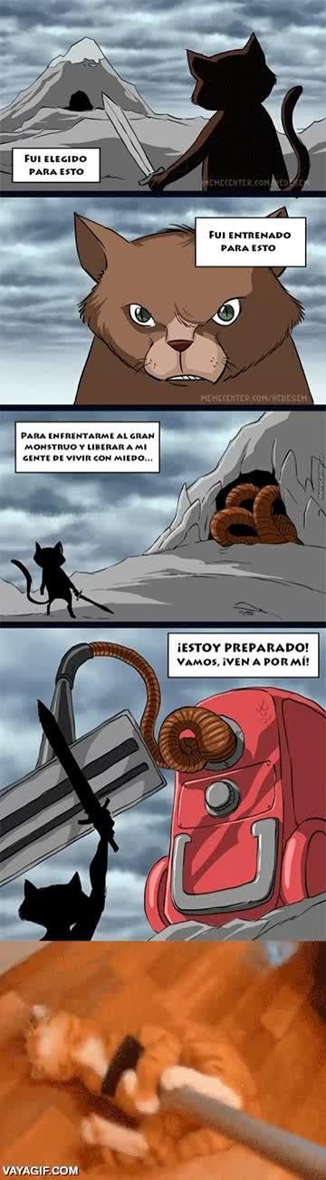Enlace a El peor enemigo de un gato
