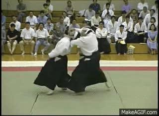 Enlace a Aikijutsu en su plena esencia