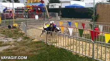 Enlace a Y cuando crees que ya lo has visto todo, monos cowboys cabalgando sobre perros