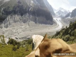 Enlace a Antes de la llegada de los drones, la única manera de grabar los cielos era con un águila