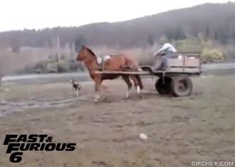 Enlace a Me muero de ganas de ver la nueva de Fast & Furious
