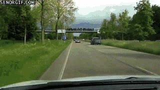 Enlace a Un día cualquiera en una carretera de los Países Bajos...