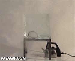 Enlace a Una tetera en marcha vs. un gran bloque de hielo, ¿quién ganará?