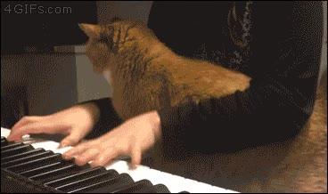Enlace a El gato al que le gustaba escuchar el piano, muy de cerca