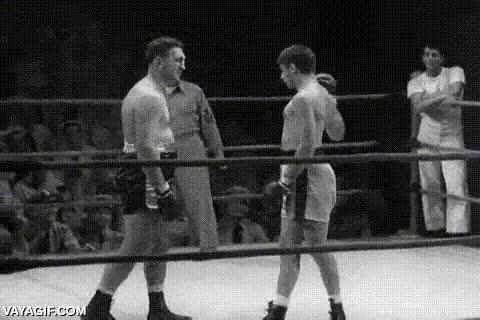 Enlace a El boxeador troll