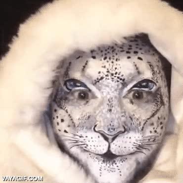 Enlace a El gato humano, reina del maquillaje