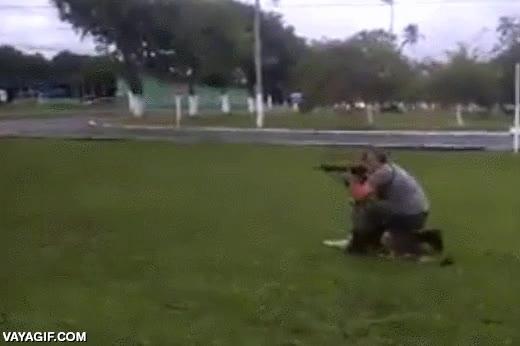 Enlace a Perros soldado, no los encontrarás mejor entrenados