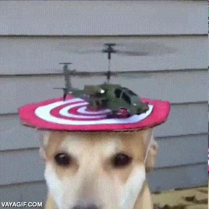 Enlace a Os presento el nuevo helipuerto interactivo que he instalado en mi casa