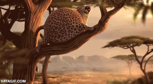Enlace a ¿Qué pasaría si los animales fuesen esféricos?