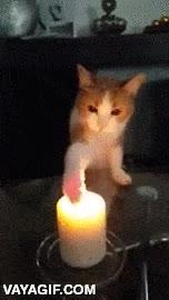 Enlace a ¡Que me quiero comer el fuego! Si así funciona con el agua, supongo que con el fuego...